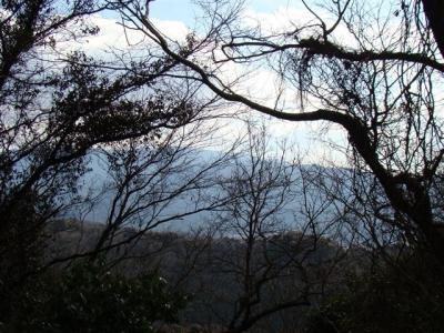 2008-02-01-050.jpg