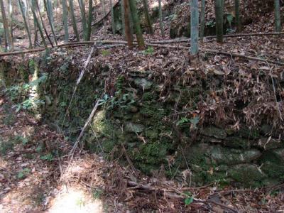 2008-02-01-054.jpg