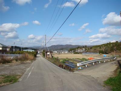 2008-02-01-079.jpg