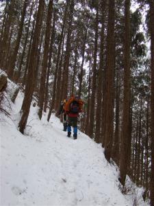 2008-02-10-015.jpg