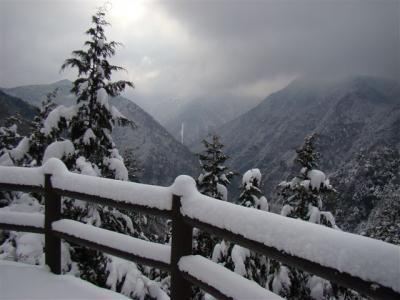 2008-02-10-020.jpg