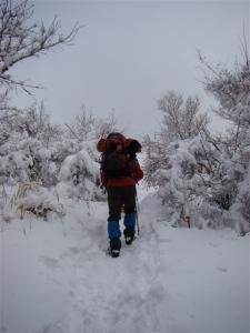 2008-02-10-045.jpg
