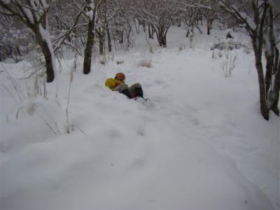 2008-02-10-065.jpg