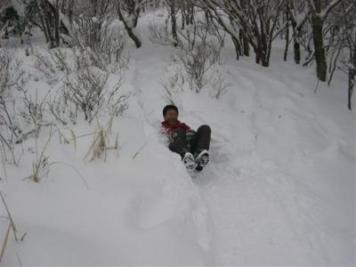 2008-02-10-T-001.jpg