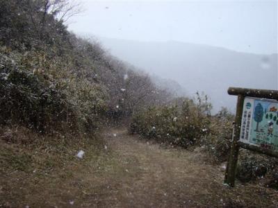 2008-02-17-101.jpg