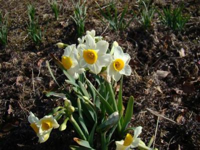2008-03-01-063.jpg