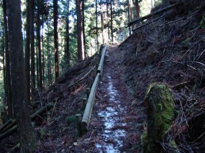 2008-03-15-004.jpg