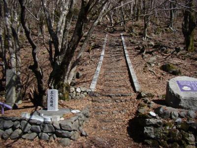 2008-03-15-024.jpg
