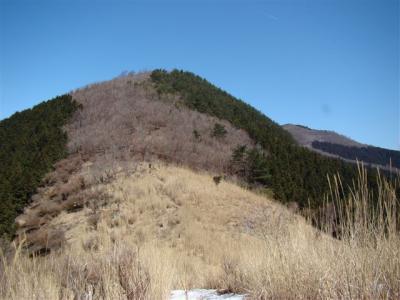 2008-03-15-062.jpg