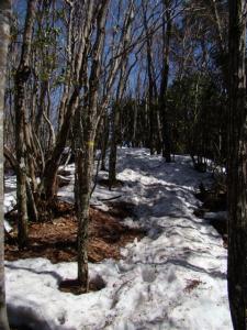 2008-03-15-064.jpg