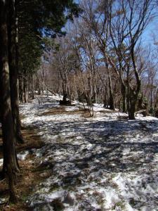 2008-03-15-070.jpg