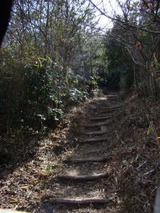 2008-03-22-091.jpg