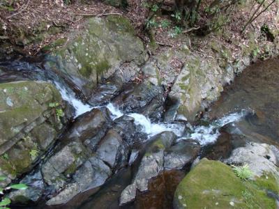 2008-03-22-151.jpg