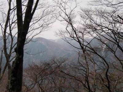 2008-04-12-020.jpg