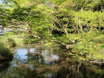 2008-04-20-091.jpg
