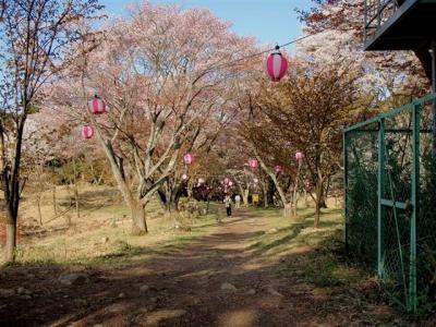 2008-04-26-010.jpg