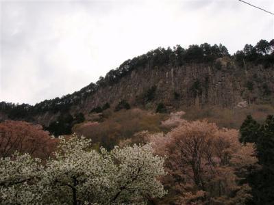 2008-04-26-219.jpg