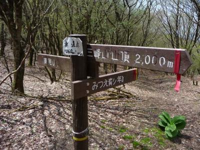 2008-05-03-199.jpg