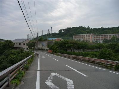 2008-06-07-107.jpg