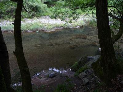 2008-07-05-049.jpg