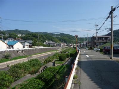 2008-09-06-001.jpg