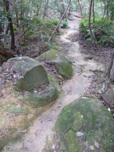 2008-09-06-054.jpg