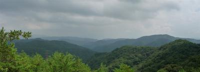 2008-09-06-p.jpg