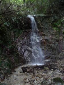 2008-10-04-075.jpg