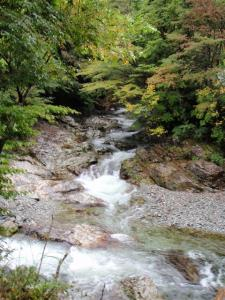 2008-10-11-002.jpg