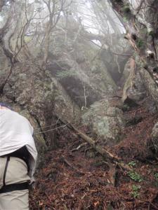 2008-10-11-029.jpg