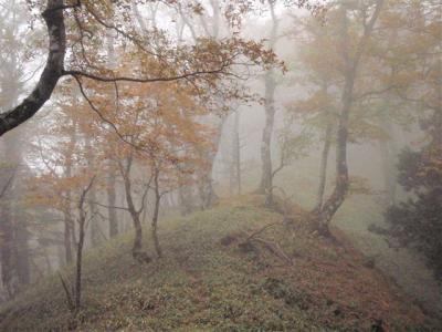 2008-10-11-076.jpg