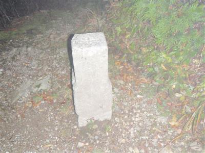 2008-10-11-085.jpg