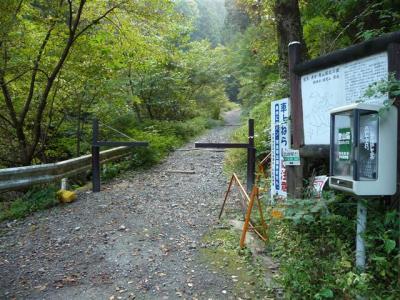 2008-10-19-002.jpg
