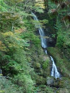 2008-10-19-010.jpg