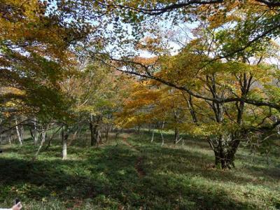 2008-10-19-077.jpg