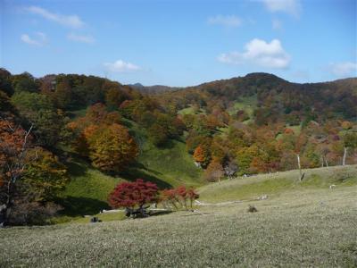 2008-10-19-088.jpg