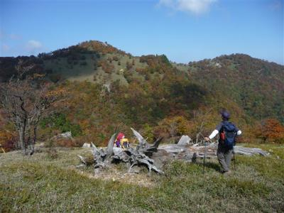 2008-10-19-093.jpg