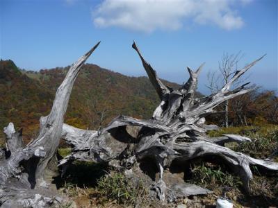 2008-10-19-103.jpg