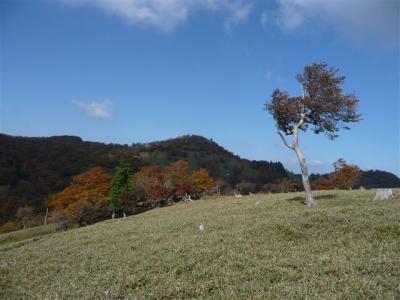 2008-10-19-121.jpg