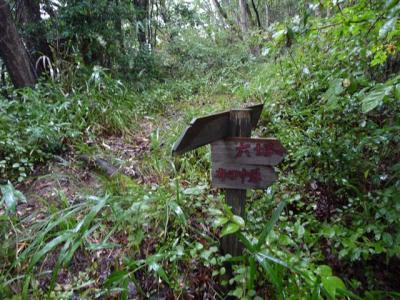 2008-10-26-005.jpg