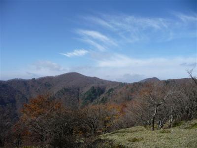 2008-11-02-051.jpg