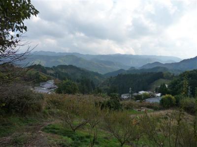 2008-11-15-120.jpg