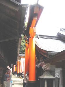 fusimi-omosiro001s.jpg