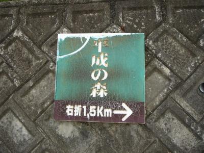 hidakaiimoriyama000.jpg