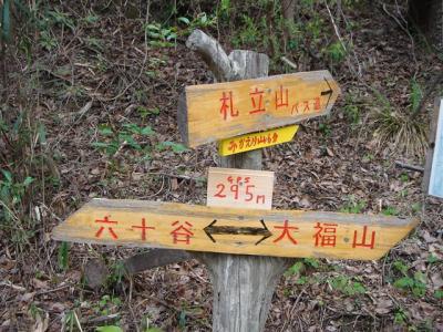 iwagami-fudatate013.jpg