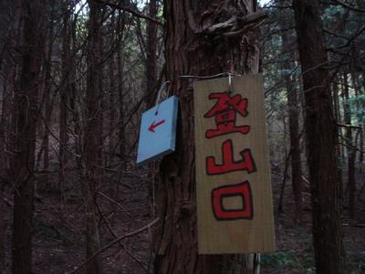 iwagami-fudatate045.jpg