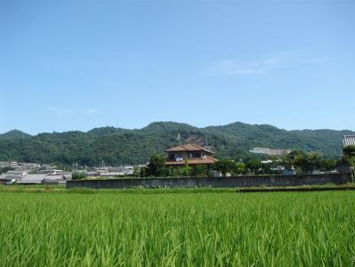 iwagami-iimori004.jpg