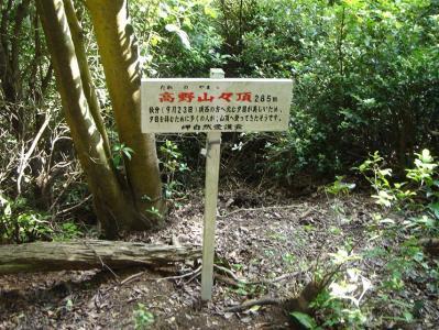 iwagami-iimori111.jpg