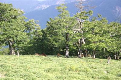k2007-08-25-019.jpg