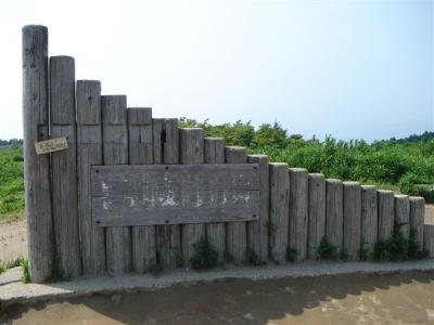 katuragi51s.jpg